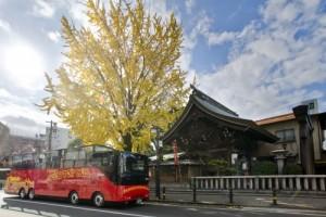 オープントップバス(提供:福岡市)